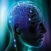 PNL, Meditación y Nivel Transpersonal
