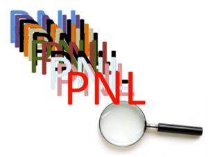 LUPA-PNL-pnlplus